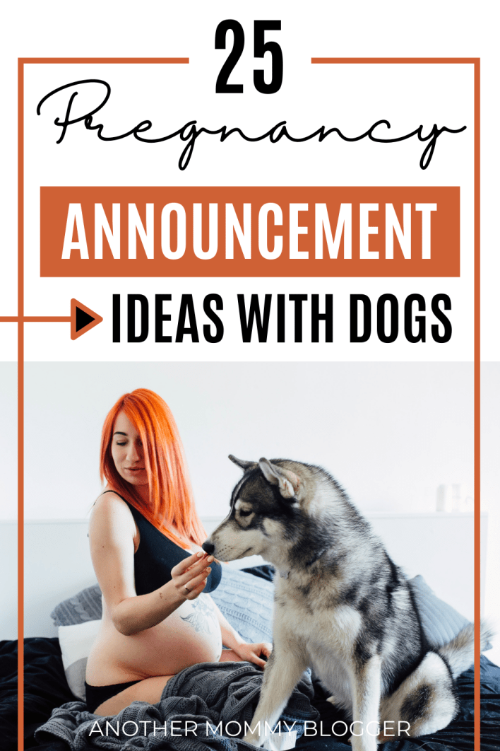 These are pregnancy announcement ideas with dogs. Have your dog help tell your family you're pregnant.