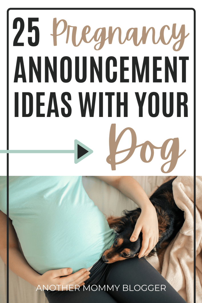 Ideas for your pet to announce your pregnancy. These are the best pregnancy announcements with dogs. #pregnancy