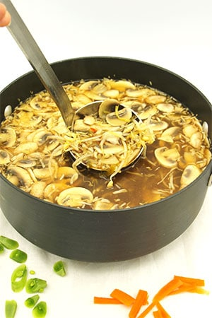 Pile on hot & sour soup in pot with ladle