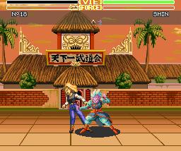 dbz3_combat4