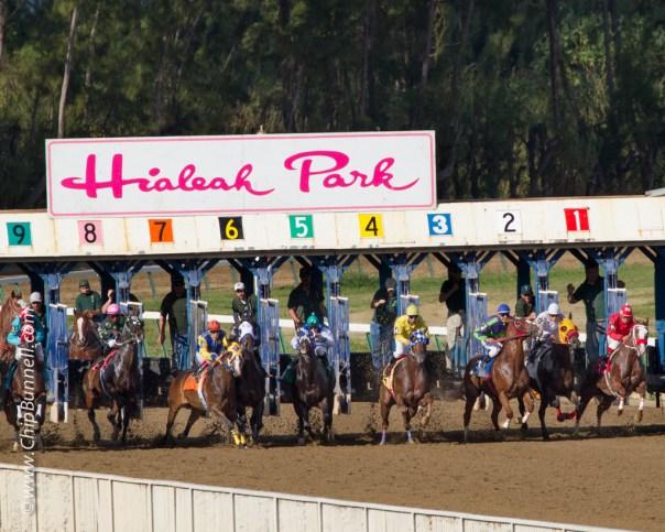 Hialeah Horses_BUNNELL-01052013-143