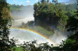 Early rainbows