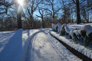 Frozen Walk garland