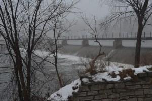 Foggy day 049