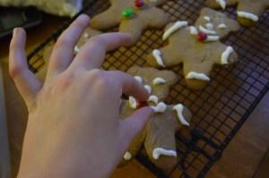 Gingerbread 012