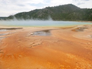 Spring and thermophiles at Midway Geyser Basin, Yellowstone National Park, WY