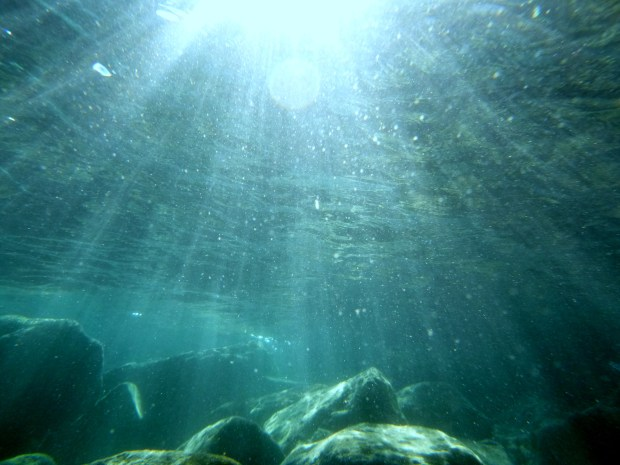 Underwater view of the shallows, Crater Lake National Park, Oregon