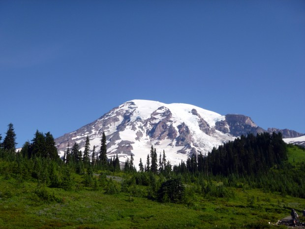 They don't call this region of the park Paradise without cause.  Mount Rainier National Park, WA