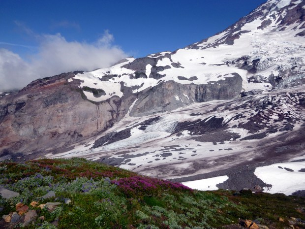 Passing glaciers on the ascent of Skyline Loop Trail with meadows in the foreground, Mount Rainier National Park, WA