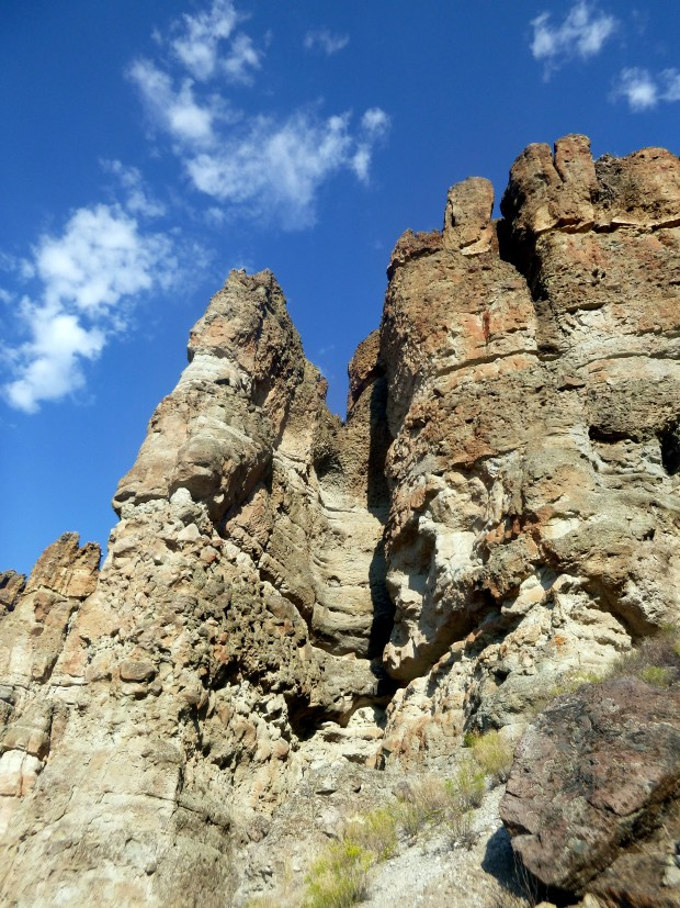 View of the Palisades from Arch Trail, Clarno Unit, John Day Fossil Beds, Oregon