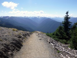 Big Meadows Trail with Olympic Mountains, Olympic National Park