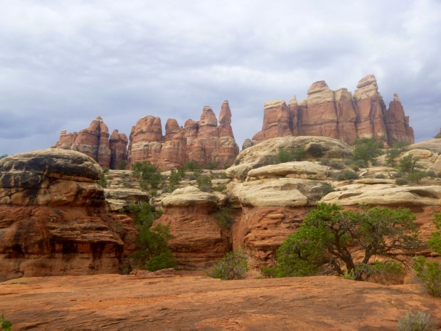 Fins with hoodoos in foreground, Chesler Park Loop Trail, Canyonlands National Park, Utah