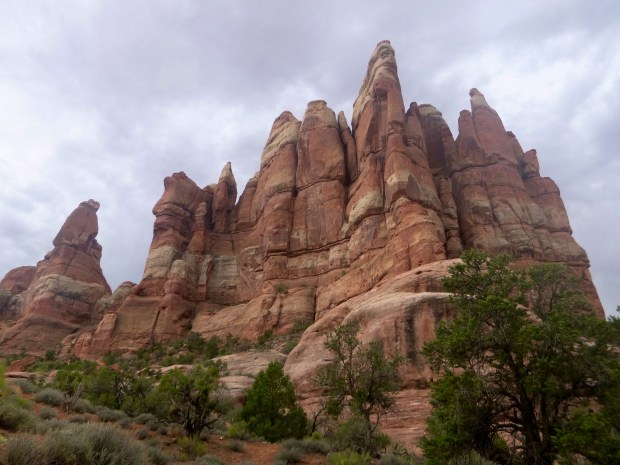 Sandstone formation, Chesler Park Loop Trail, Canyonlands National Park, Utah