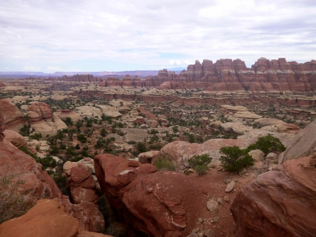 Another view behind me after climbing above hoodoos and past fins, Chesler Park Loop Trail, Canyonlands National Park, Utah