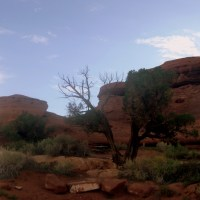 Canyonlands, Part 2: Arrival at Needles, the Best Campground in the World, and the Massive Chesler Park Loop/Joint Trail/Druid Arch Hike