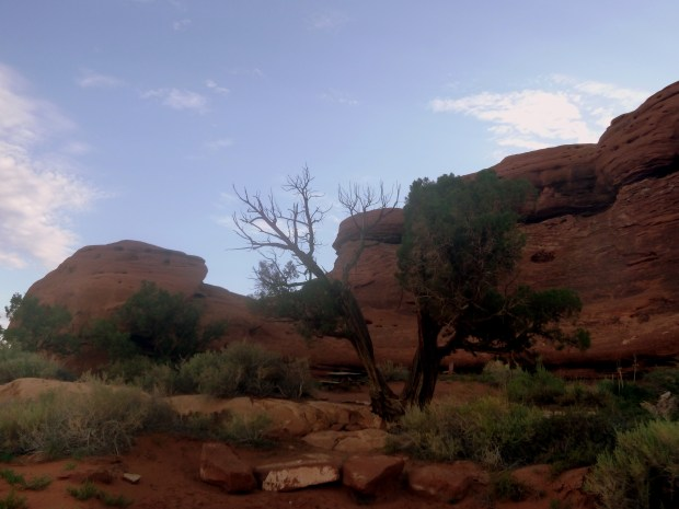 Campsite at Needles Outpost, Canyonlands National Park, Utah