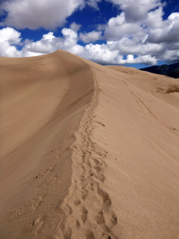 """A """"trail"""" in the dune ridges, Great Sand Dunes National Park, Colorado"""