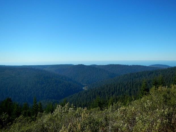 Redwoods Creek Overlook, Redwoods National Park, California