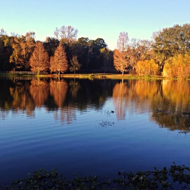 Lake Leon, Tom Brown Park, Tallahassee, Florida