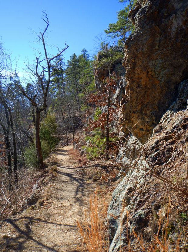 Goat Rock Trail with novaculite boulders at right, Hot Springs National Park, Arkansas
