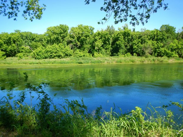 The Colorado River at Carson Creek Ranch, Austin Psych Fest, Austin, Texas