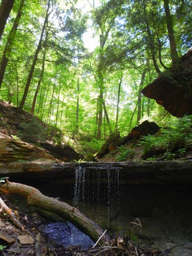 Maidenhair Falls, Trail 2, Shades State Park, Indiana