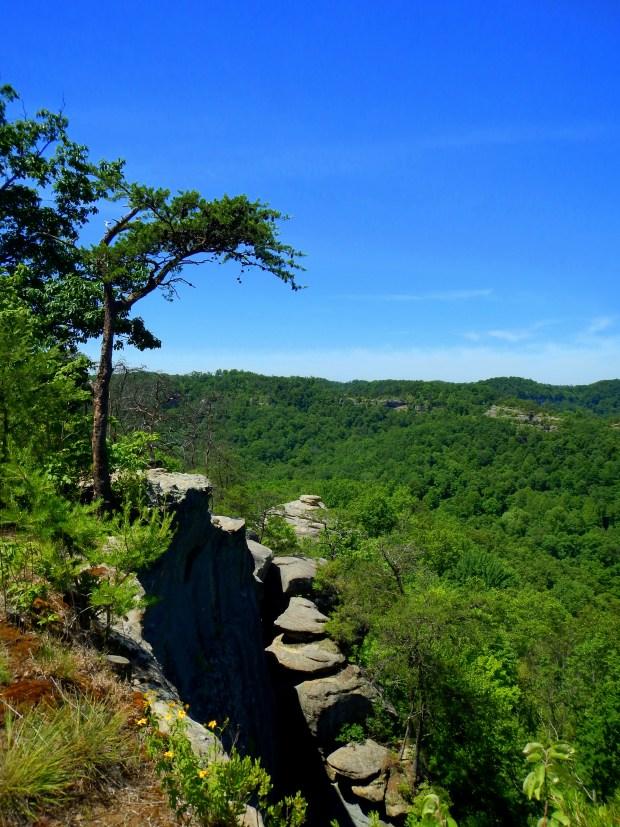 Views off the ridge, Auxier Ridge Trail, Daniel Boone National Forest, Kentucky