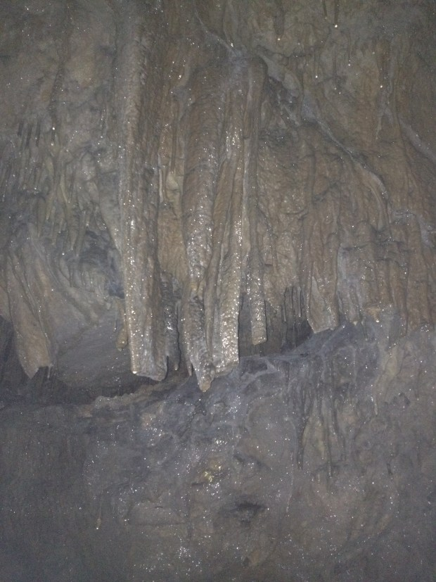 Bad phone picture of iridescent stalactites, Gap Cave, Cumberland Gap National Historical Park, Virginia