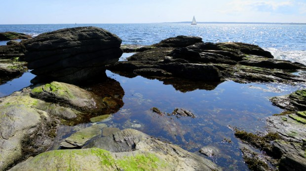 Tide pools, Beavertail State Park, Jamestown, Rhode Island