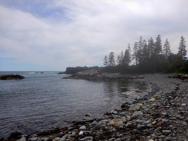 Bogs Brook Cove Reserve, Maine