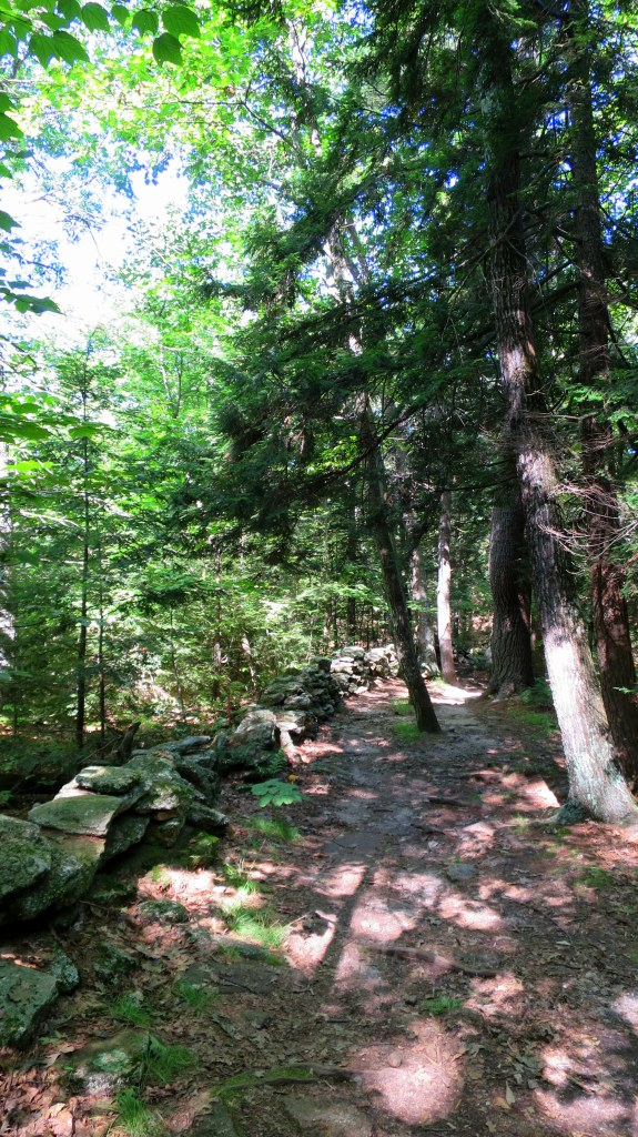 Boundary Trail, Bradbury Mountain State Park, Maine