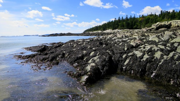 New River Beach Provincial Park, New Brunswick, Canada