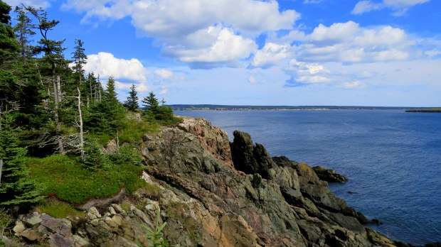 Nature Trail, New River Beach Provincial Park, New Brunswick, Canada
