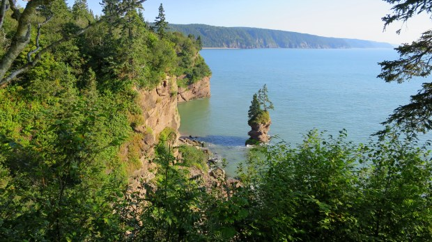"Sea stack (popularly called ""flower pots ""in Canada) Pot Rock Scenic Path, Fundy Trail, New Brunswick, Canada"
