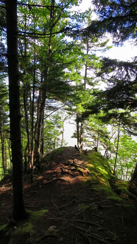 Coastal Trail, Fundy National Park, New Brunswick, Canada