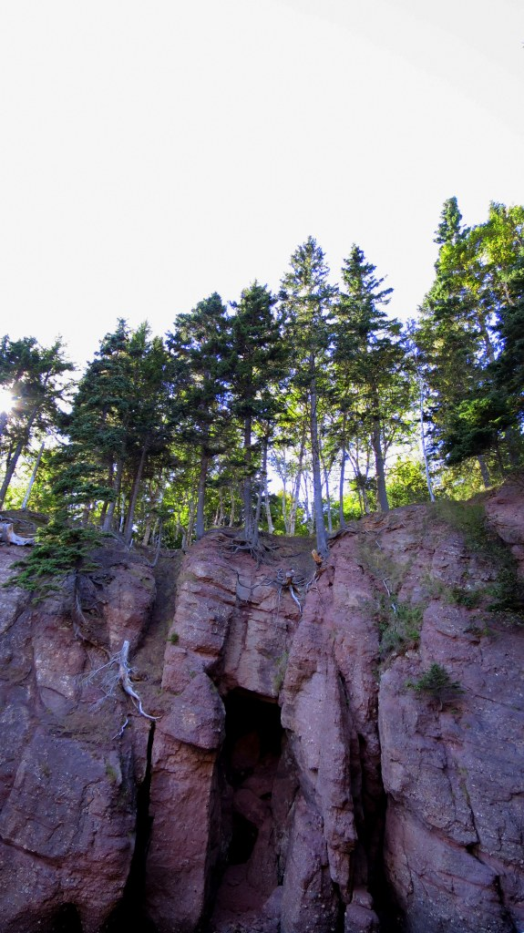 Looking into the sun from beach below the cliffs, Hopewell Rocks, New Brunswick, Canada