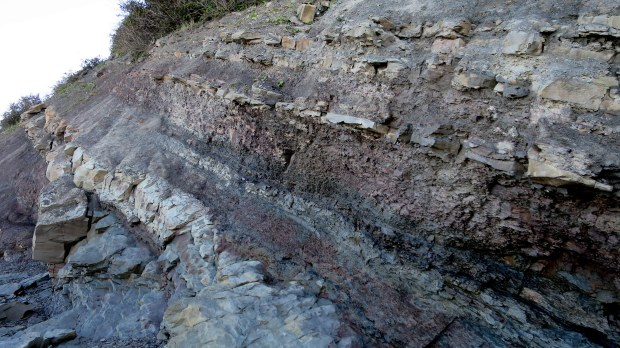 Ancient layers of limestone and sandstone with visible coal seam, Joggins Fossil Cliffs, Nova Scotia, Canada