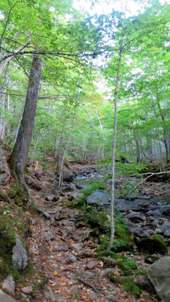 MacIntosh Brook Trail, Cape Breton Highlands National Park, Nova Scotia, Canada
