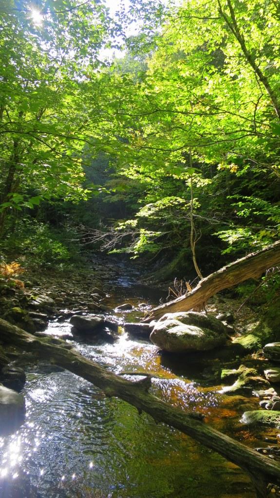Crossing Aspy Brook, Aspy Trail, Cape Breton Highlands National Park, Nova Scotia, Canada