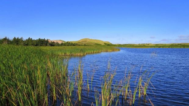 Bowley Pond and dunes, Greenwich Dunes Trail, Greenwich, Prince Edward Island National Park, Prince Edward Island, Canada