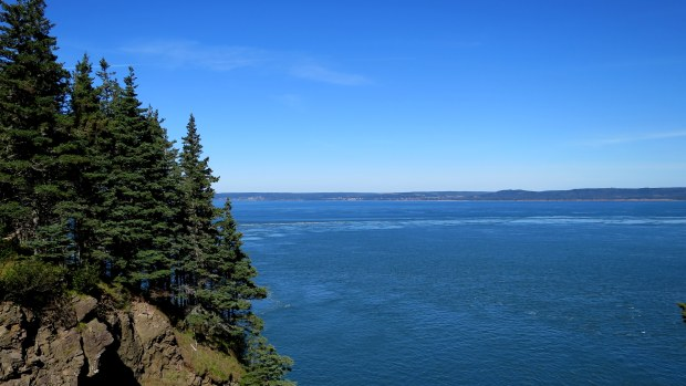 View onto Minas Basin, Cape Split Trail, Cape Split Provincial Park, Nova Scotia, Canada
