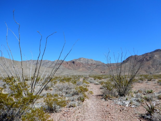 Lower Sunset Trail, Franklin Mountains State Park, El Paso, Texas