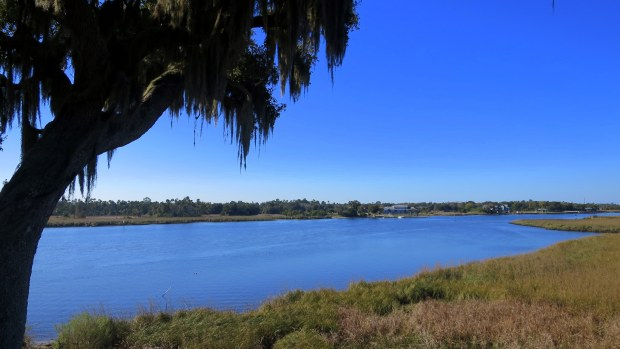 View from top of Temple Mound, Crystal River State Archaeological Site, Florida