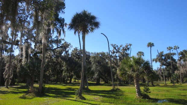 The Plaza, Crystal River State Archaeological Site, Florida