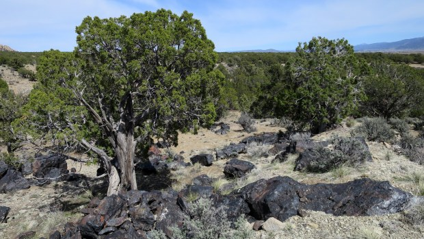 Chunks of iron deposited on hill, Iron Mountain District, Cedar City, Utah