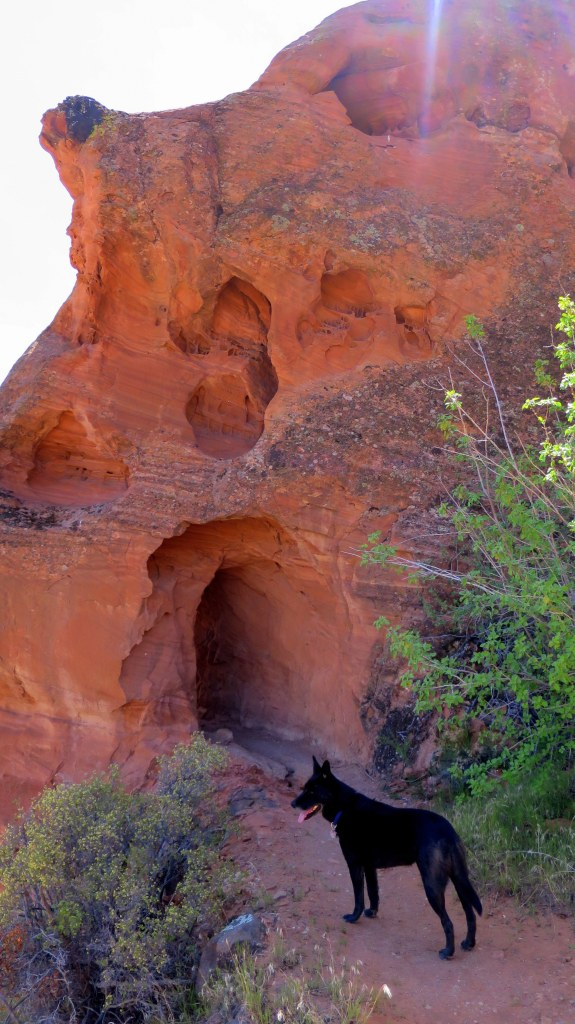 Old water line tunnel, Red Cliffs National Conservation Area, Utah