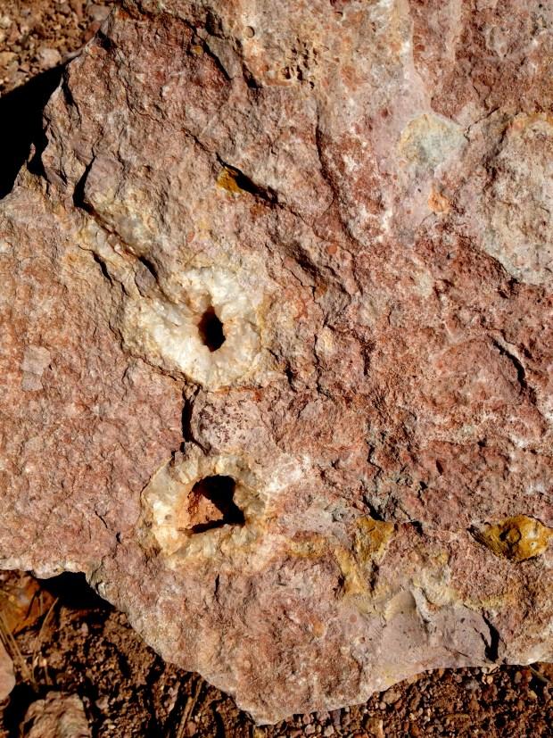 Geode, Dixie National Forest, Utah