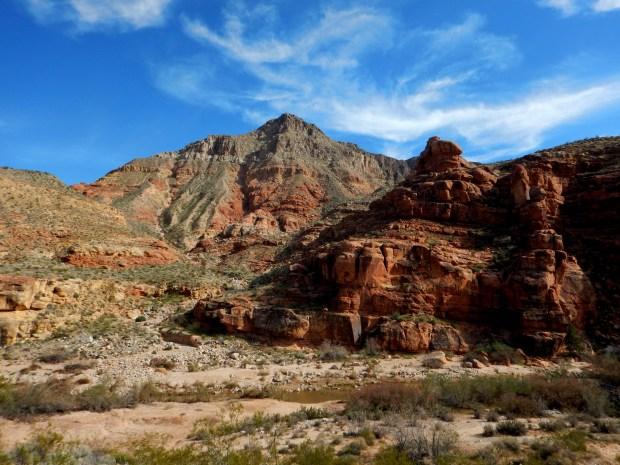 Virgin River Canyon Recreation Area, Arizona