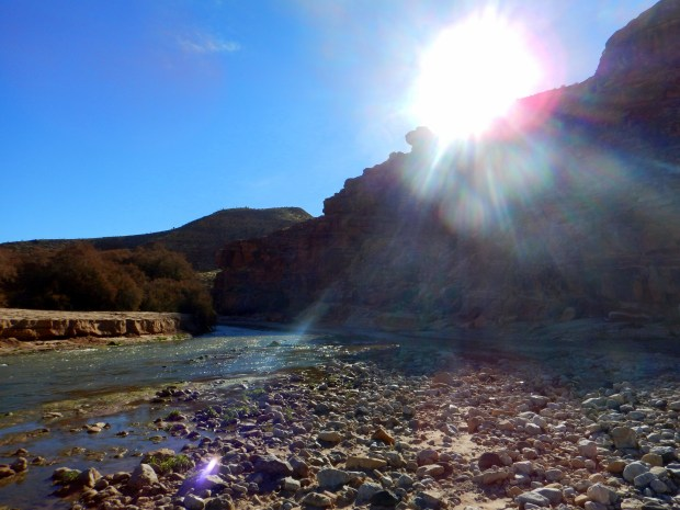 Virgin River Crossing, Virgin River Canyon Recreation Area, Arizona