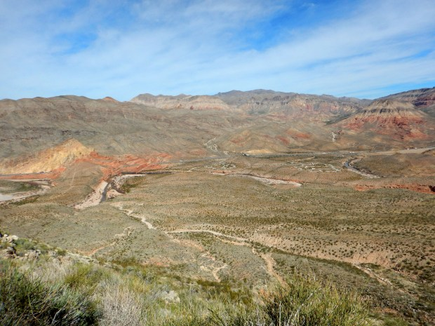 View from the way up, Virgin River Canyon Recreation Area, Arizona